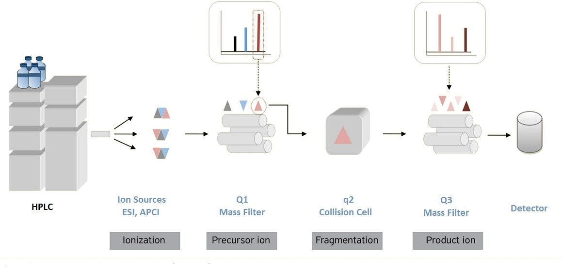 application of mass spectrometry in proteomics