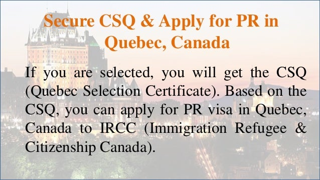 quebec selection certificate application status