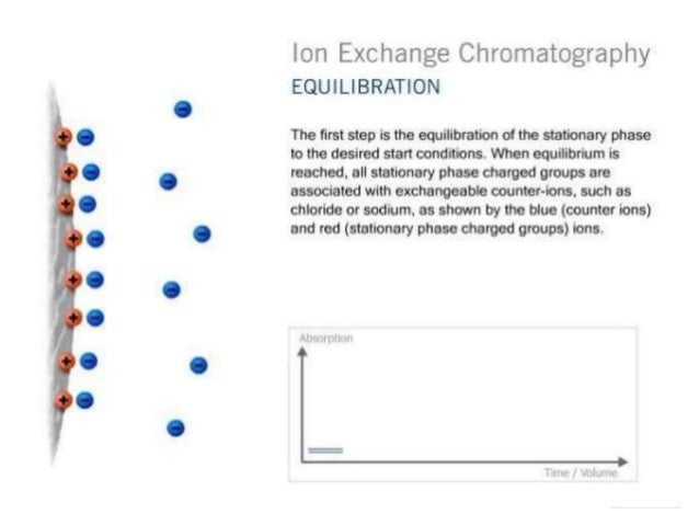 applications of ion exchange chromatography ppt