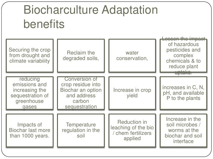 application of biochar in agriculture