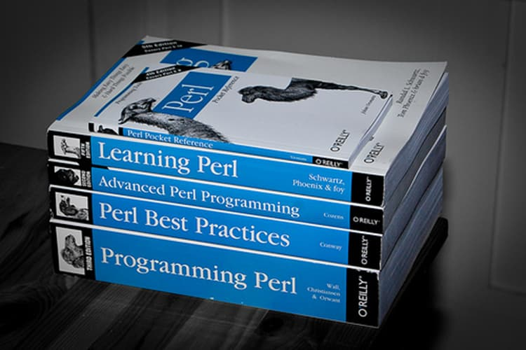 best programming language to develop database applications