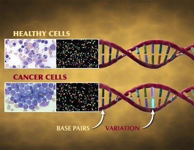 application of human genome project