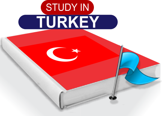 turkey visa application form for pakistani