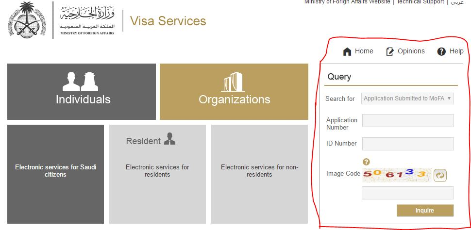 visa application status check online