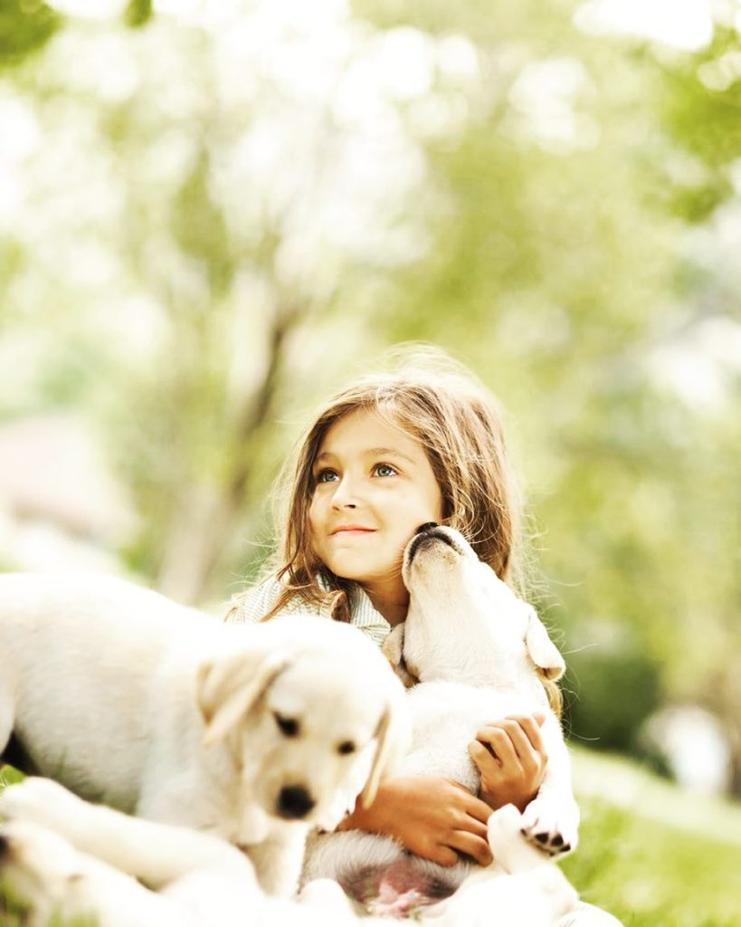 application to import pets permit philippines