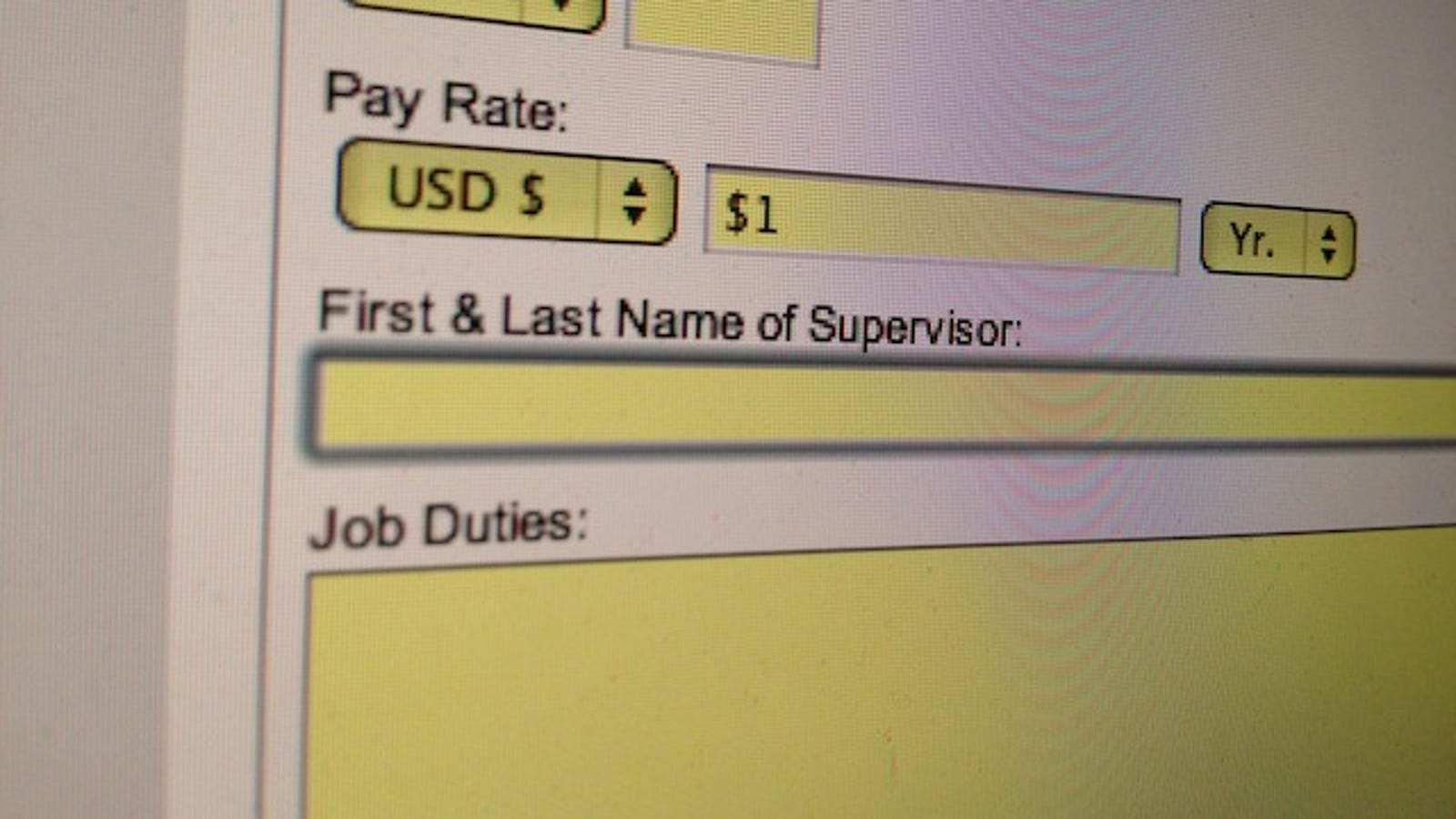 how to fill a job application