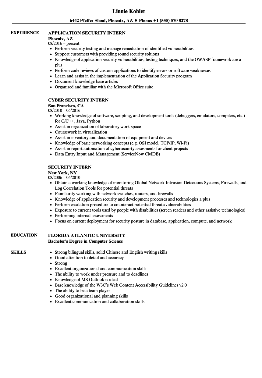 web application security testing resume