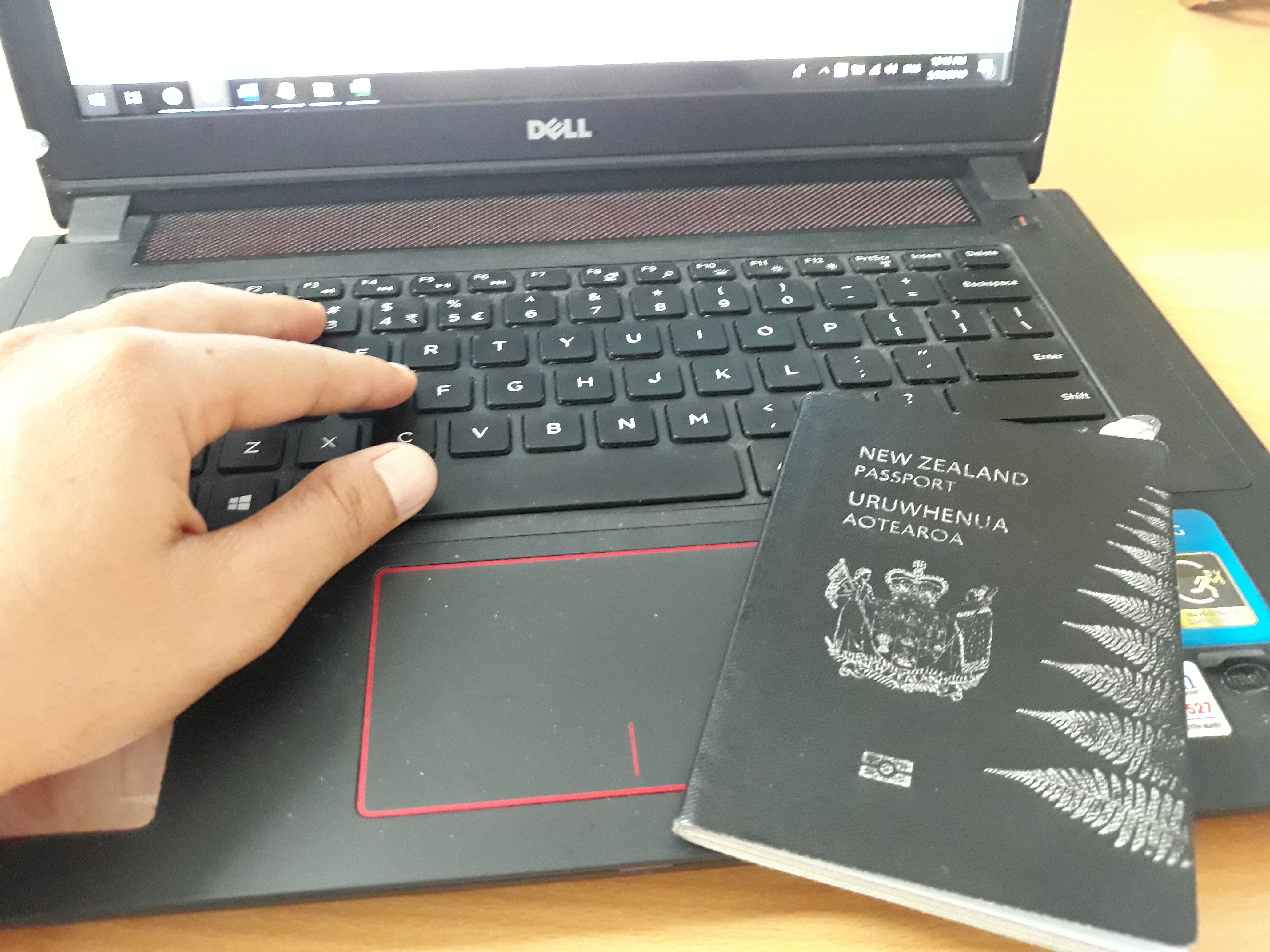 new zealand visa application time