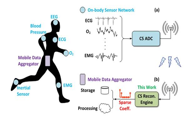 application of digital signal processing in medical field