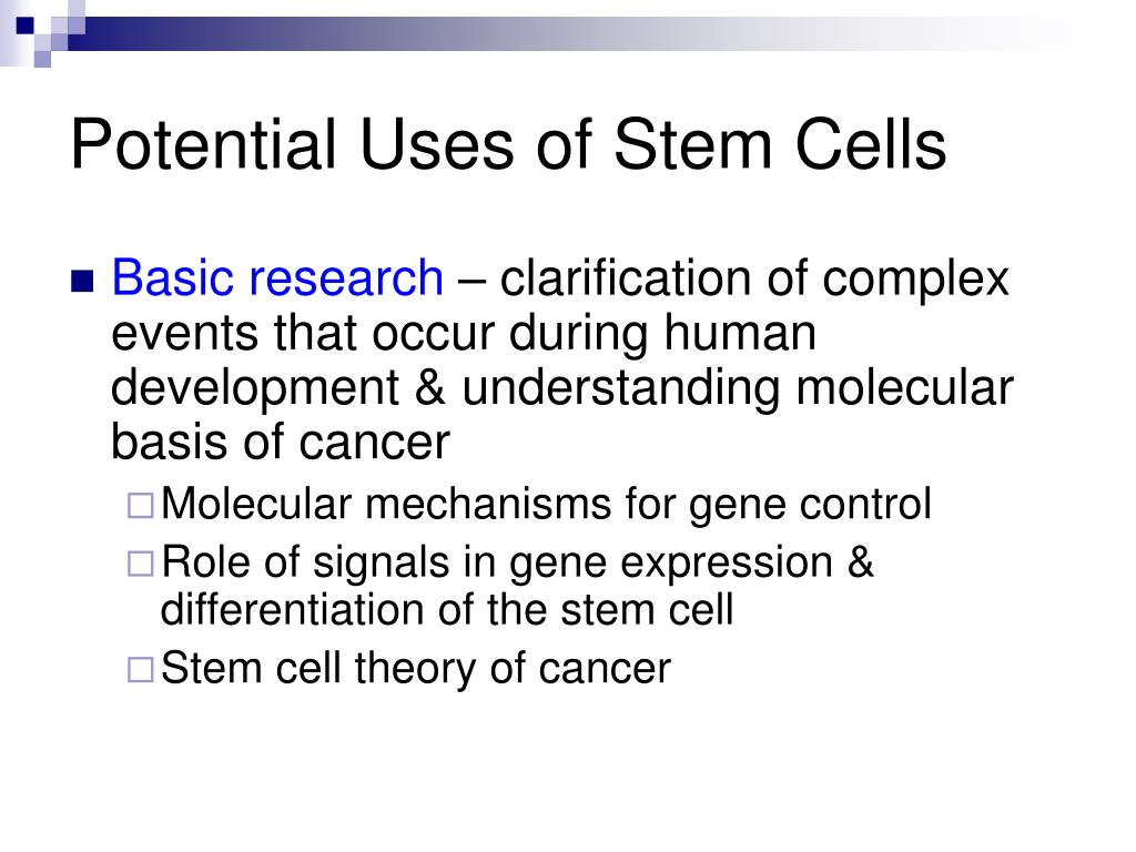 applications of embryonic stem cells ppt