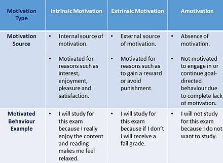 application of self determination theory