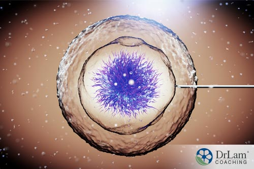 future applications of stem cells