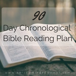 chronological life application study bible kjv
