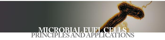 micro fuel cells principles and applications