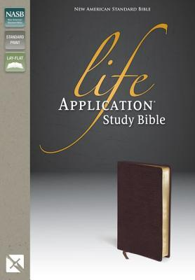 nrsv life application study bible
