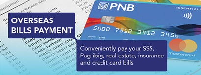 pnb credit card application status