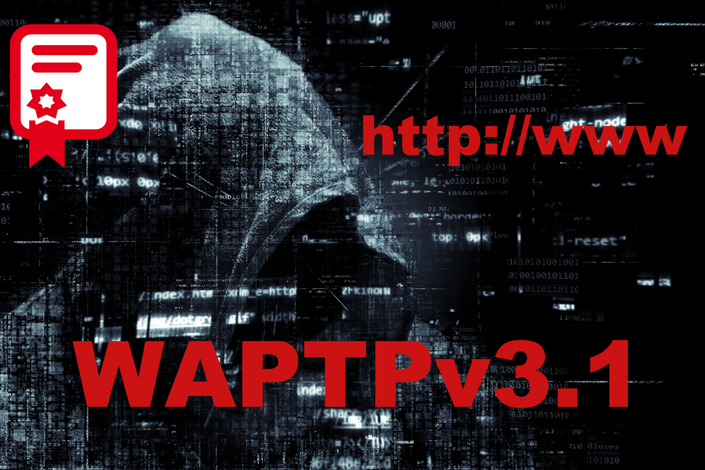 web application penetration testing professional waptp v3 1